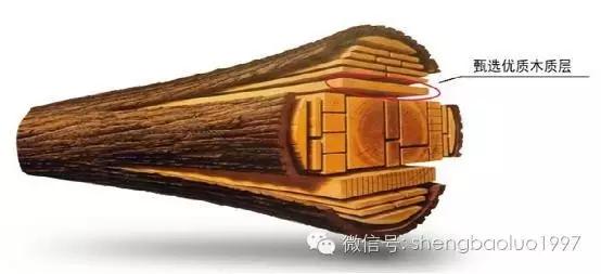 """高""""颜值""""高内涵养成术(三) ——圣保罗实木地板"""
